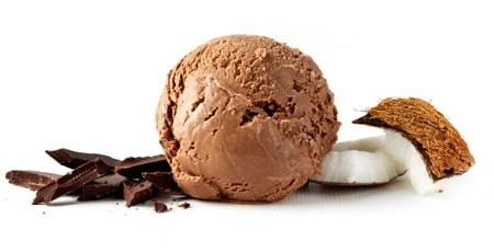 buy vegan chocolate ice cream