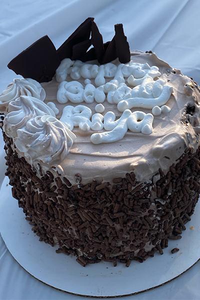 chocolate chip ice cream cake
