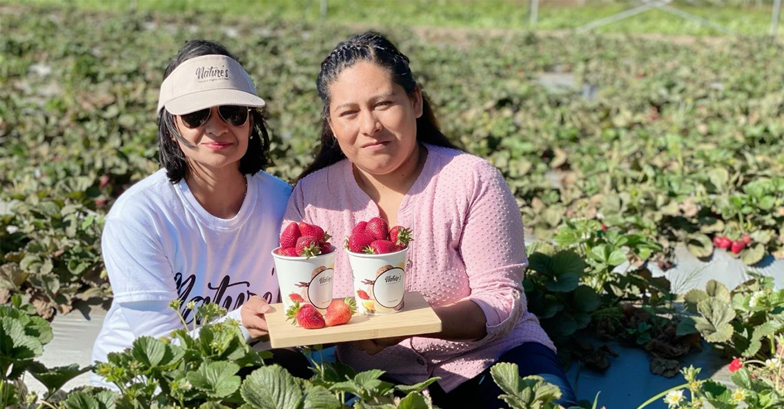 Local Supporting Local – Know How Nature's Buy Their Produce from Local Farms