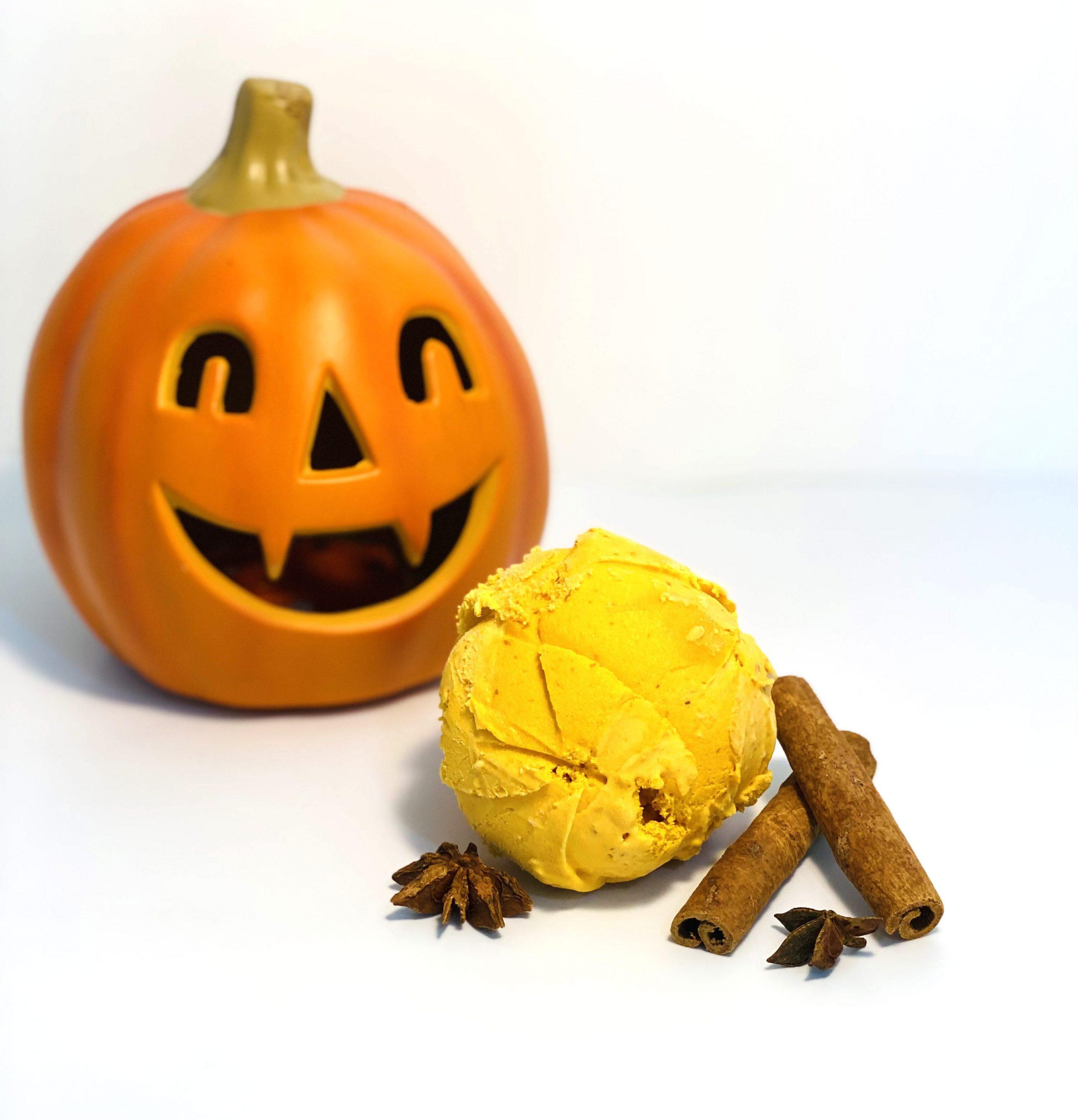 Jack-O-Lantern Pumpkin1